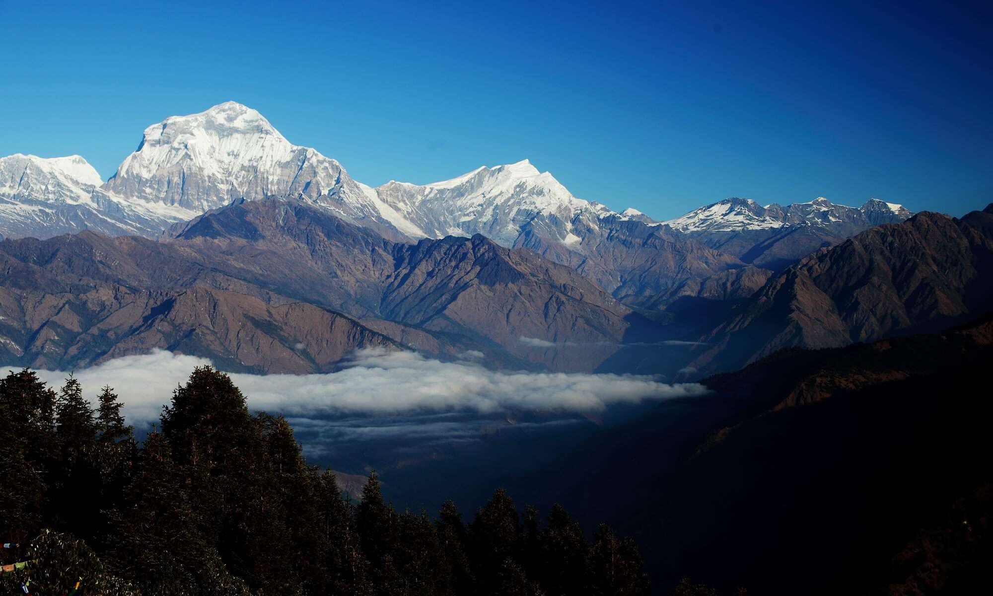 Himalayan View from Ghorepani- Poon Hill